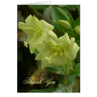 Yellow Willow Herb Blossoms Card