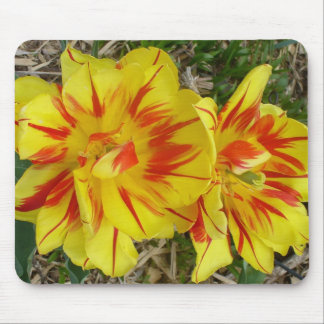 Yellow with Red Striped Flower Mouse Pad