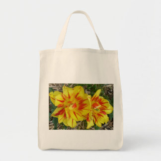 Yellow with Red Striped Flower Orgnaic Bag