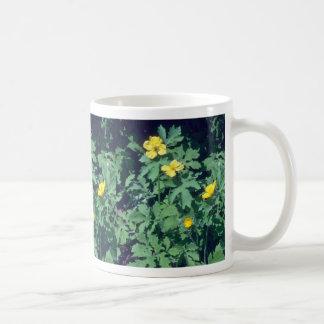 yellow Wood Poppy, (Stylophorum) flowers Classic White Coffee Mug