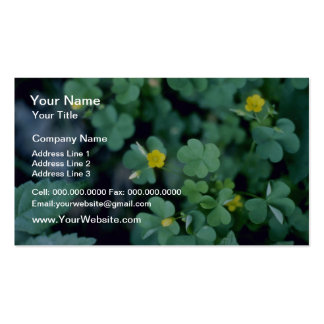 yellow Yellow Wood-Sorrel (Oxalis Stricta) flowers Business Card Templates