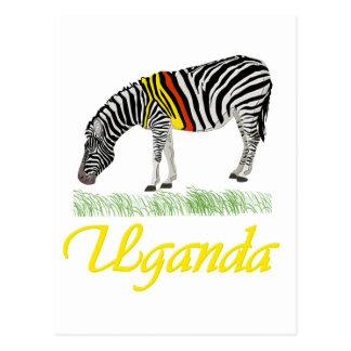 Yellow Zebra Series Postcard