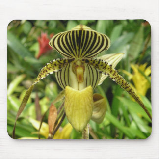 Yellow Zebra Stripes Orchid Mouse Pad