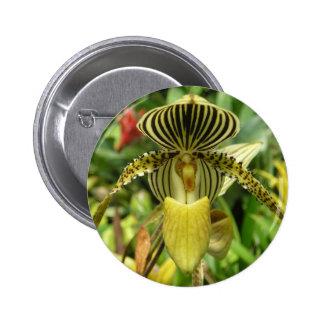 Yellow Zebra Stripes Orchid Pinback Button