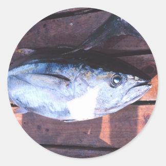 Yellowfin Tuna caught Classic Round Sticker
