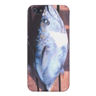 Yellowfin Tuna caught Cases For iPhone 5