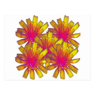 YellowFlower2 Postcard