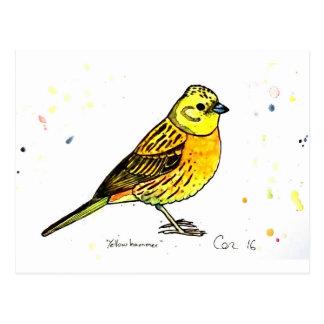 Yellowhammer bird postcard