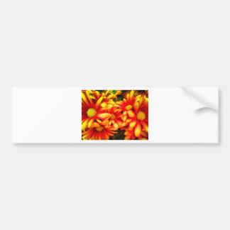 yellowred dream bumper sticker