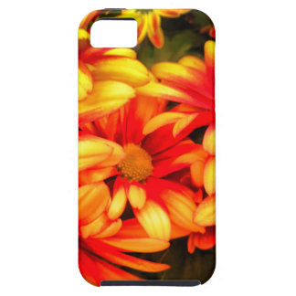 yellowred dream iPhone SE/5/5s case