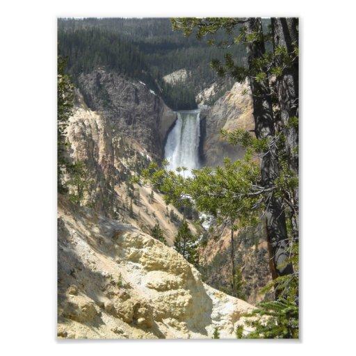 Yellowstone 1 art photo
