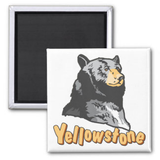 Yellowstone 2 Inch Square Magnet