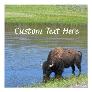 "Yellowstone American Bison in Pond 5.25"" Square Invitation Card"