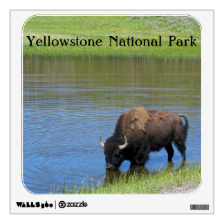 Yellowstone American Bison in Pond Wall Decal