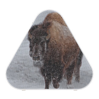 Yellowstone Bison Speaker