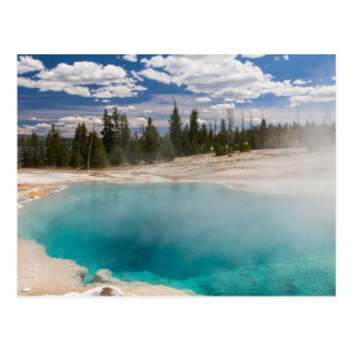 Yellowstone - Black pool postcard