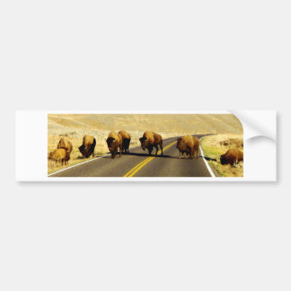 Yellowstone Buffalo Gear Bumper Sticker