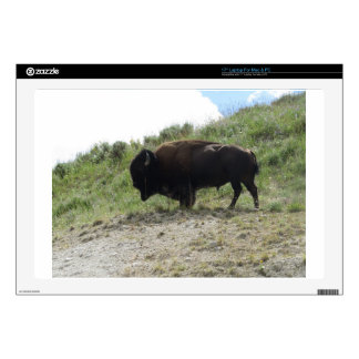 Yellowstone  Buffalo Picture -  Nature At It's Bes Skin For Laptop