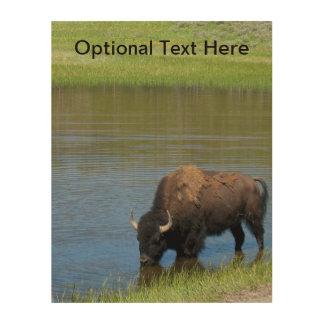Yellowstone Buffalo Souvenir Wood Print