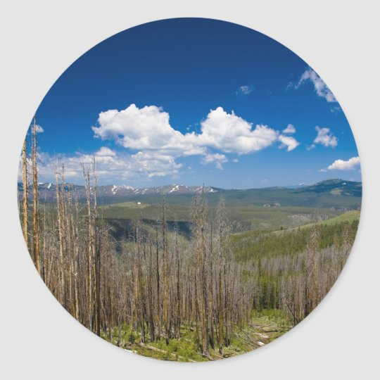Yellowstone Burned Forest Classic Round Sticker