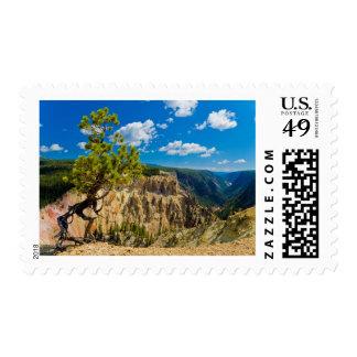 Yellowstone Canyon Edge Postage