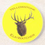 Yellowstone Coasters