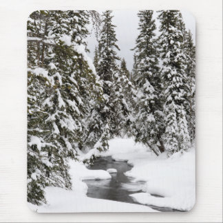 Yellowstone Cold River Flowing Mouse Pad