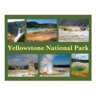 Yellowstone Collage 2 Postcard