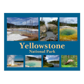Yellowstone Collage 3 Postcard