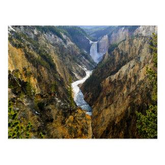 Yellowstone Falls Postcard