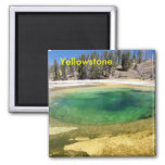 Yellowstone geyser 2 inch square magnet