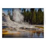 Yellowstone geyser notecard greeting cards