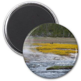 Yellowstone Geysers and Wild Flowers Magnet