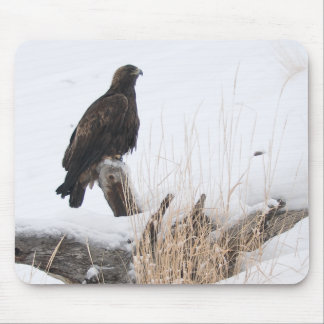 Yellowstone Golden Eagle Mouse Pad
