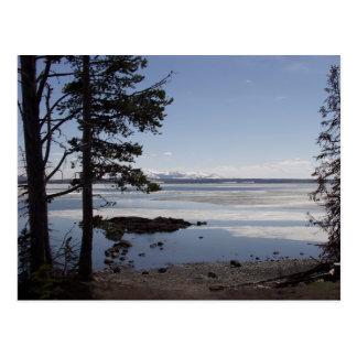 Yellowstone Lake Postcard