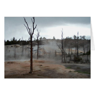 Yellowstone Mist Thermal Pools Blank Greeting Card