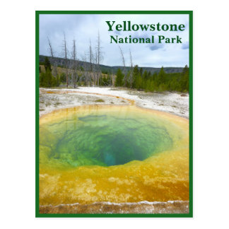 Yellowstone: Morning Glory Pool with text Postcard