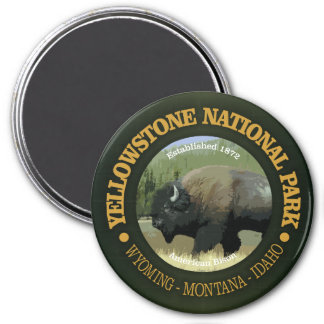 Yellowstone National Park (bison) Magnet