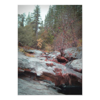 "Yellowstone National Park 5"" X 7"" Invitation Card"