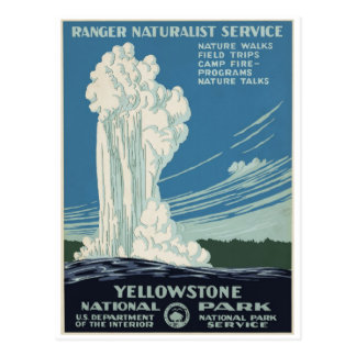 Yellowstone National Park Old Faithful 1938 Postcard