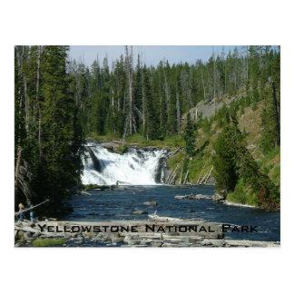 Yellowstone National Park Postcard