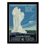 Yellowstone National Park ranger Post Cards