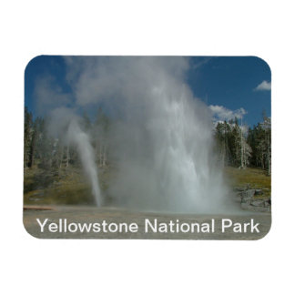 Yellowstone National Park Rectangle Magnets
