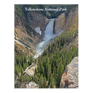 Yellowstone National Park Scenic View Postcard