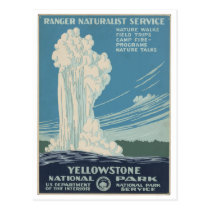 Yellowstone National Park Vintage Postcard