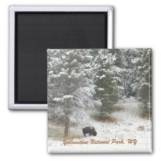 Yellowstone National Park, WY 2 Inch Square Magnet