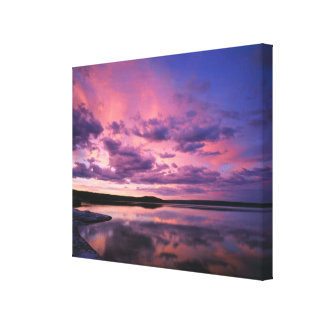 Yellowstone National Park, Wyoming. USA. Gallery Wrapped Canvas