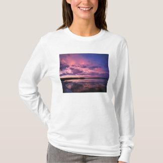 Yellowstone National Park, Wyoming. USA. T-Shirt