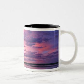 Yellowstone National Park, Wyoming. USA. Two-Tone Coffee Mug