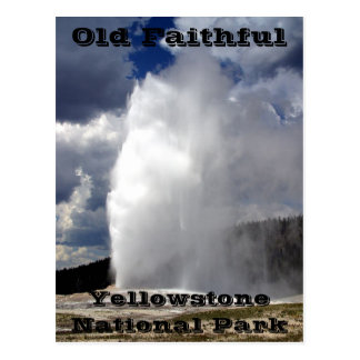 Yellowstone Old Faithful Postcard